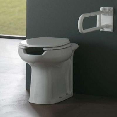 poza Capac vas wc pentru persoane cu dizabilitati ROCA 82A001Z000002
