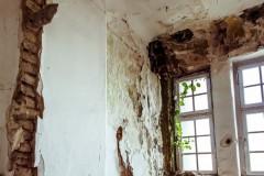 Eliminarea si prevenirea mucegaiului